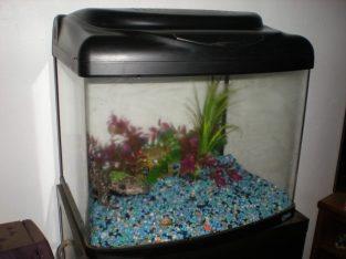 58L Fish tank