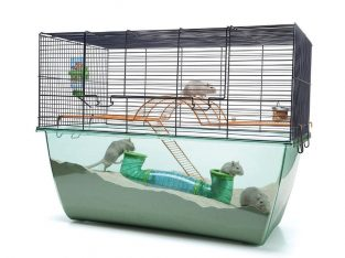 GERBIL / HAMPSTER CAGE
