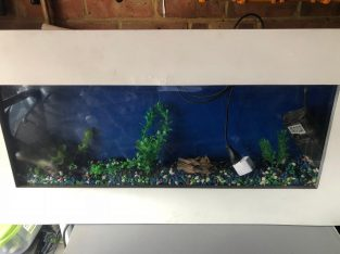 Large Wall Fish tank setup with light filter heater