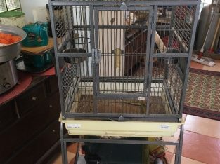 FOR SALE BIRD CAGE