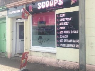 Profitable ice cream business for sale