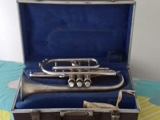 First time learner Silver Cornet