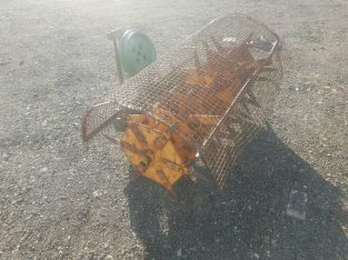 For sale Tractor three point linkage 4ft sisis aerator slitter