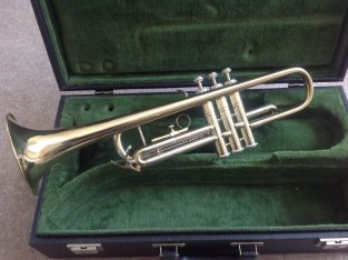 £90 B&M Champion Trumpet and Accesories