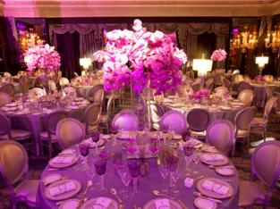 Venue Arrangement For Wedding Event in London, Birmingham and Leeds