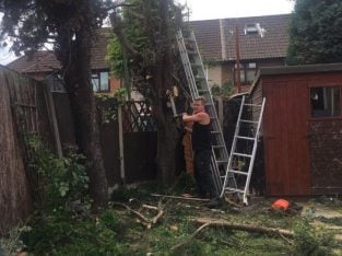 All types of tree work rubbish removal London