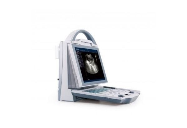 Dogs and cats Pregnancy ultrasound scan