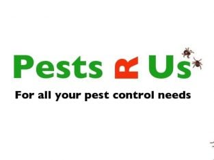 Guaranteed Fast Pest Control & Exterminator, Rats, Mice, Bed Bugs and Cockroaches