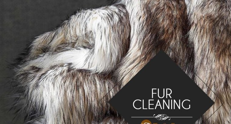 Fur Cleaning service