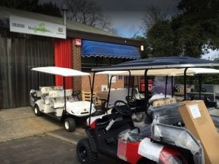 Buy a Golf Buggy & Passenger Shuttle Vehicle Business