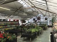 For Sale Plant Nurseries And Golf Driving Range In Tillicoultry