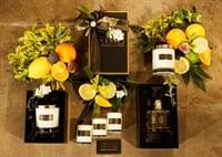 Amazing opportunity – Online Candle & Diffuser Business Manufacturer For Sale