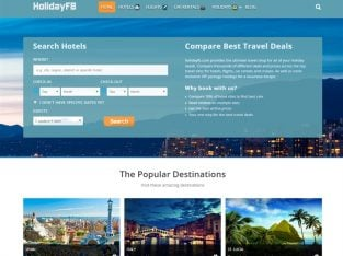 For Sale New Travel Agency Hotels/ Flights/ Cruises Bookings Website