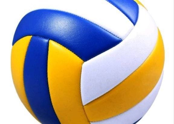 Looking for a Volleyball team mate
