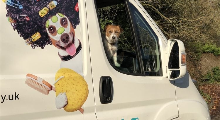 Brand new Mobile Dog & Cat Grooming Business For Sale