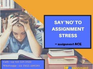 Affordable Assignment Help by AssignmentAce