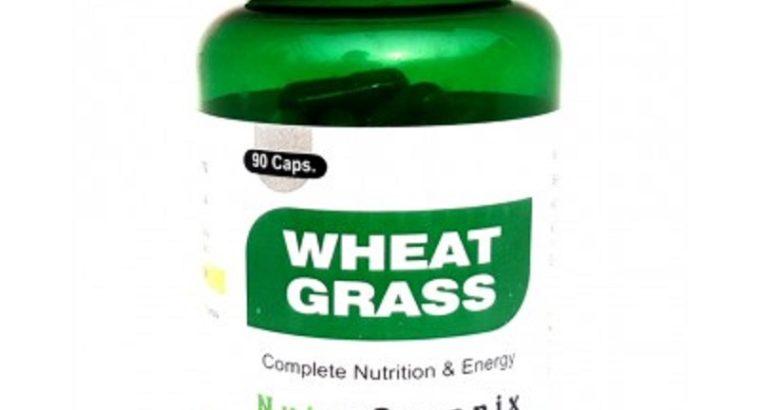 Buy Wheatgrass Capsules Online In Bulk