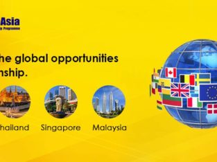 Pursueasia International internship program