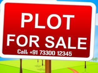 Open Plots for Sale in Yadagirigutta, YTDA, DTCP