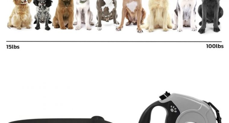Retractable Dog Lead and Collar Set